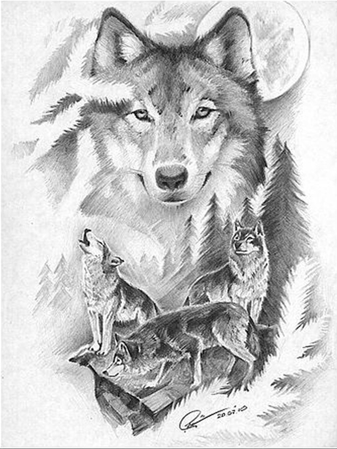 Фото с волком